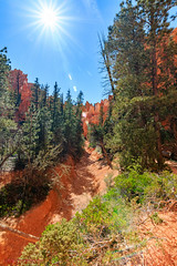 Bryce Canyon National Park (mikerhicks) Tags: travel arizona usa southwest nature geotagged outdoors photography utah spring unitedstates desert hiking adventure event backpacking bryce brycecanyon marblecanyon brycecanyonnationalpark onemile geo:country=unitedstates geo:state=utah camera:make=canon exif:make=canon tokinaatxprosd1116f28ifdx exif:lens=1116mm exif:aperture=ƒ10 geo:city=bryce exif:isospeed=100 exif:focallength=11mm canoneos7dmkii camera:model=canoneos7dmarkii exif:model=canoneos7dmarkii geo:lat=3761990833 geo:lon=11216577000 geo:lon=11216583333333 geo:lat=3762 geo:location=brycecanyon
