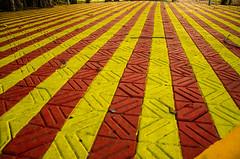 Tile Rays (keyaart) Tags: pattern konkan