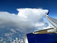 N302DN (redlegsfan21) Tags: lines air dal delta airbus dl a321200 n302dn