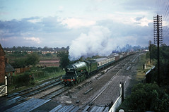 4472 Flying Scotsman by Knowle on special. Sep'68. (David Christie 14) Tags: railway flyingscotsman knowle