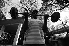 DSC_1450 (azimzainudin.com) Tags: new india art training evening martial wrestling delhi traditional wrestler kushti pehlwan pehlawan