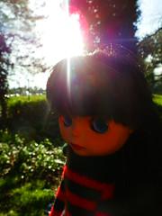 Sunny days are Happy days