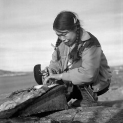 Taktu cleaning fat from seal skin with an ulu / Taktu nettoyant la graisse de la peau d'un phoque (BiblioArchives / LibraryArchives) Tags: canada fat lac inuit aboriginal nunavut ulu bac capedorset autochtone sealskin nationalfilmboardofcanada graisse nationalaboriginalday libraryandarchivescanada august1960 bibliothèqueetarchivescanada inuite taktu kinngait journéenationaledesautochtones officenationaledufilmducanada rosemarygilliat peaudunphoque août1960