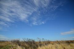 near Loch Ard Gorge (Lie's Foto Studio 2.0) Tags: nature australia victoria greatoceanroad portcampbell