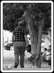 need to walk / necesidad de paseo (El Saskuas) Tags: park new nyc newyorkcity parque light italy music dog white lake newyork black macro london love blancoynegro me nature childhood japan museum kids night landscape mexico island photography la blackwhite official model nikon flickr italia photos live fat nios perro valeria higher madre gordo arriba iphone columpio byw empujar blackwhiteaward iphoneography lukyanova instagramapp saskuas