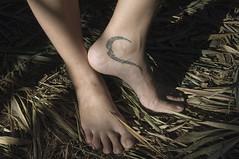 tattooed feet (philippe*) Tags: feet tattoo nikon d2x tribal