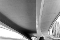 VALENCIA with Canon f/1.2L on FF (-LucaM- Photography WWW.LUCAMOGLIA.IT) Tags: plaza city las valencia les canon children de 50mm la photo spain closed y market central arts acquarium ciudad ham mercado seu cover 5d 12 fullframe valenza 50 mercato artes ff virgen sciences prosciutto spagna jamón ciutat verge mercat f12 ninos ciencias valència ibérico spagnolo ciències coperto oceanogràfic seraano