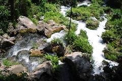 SDC13549 (felix_1994) Tags: camera green mexico san waterfalls luis vacaciones semanasanta cascada huasteca potosi natgeo huastecapotosina visitmexico conocemexico