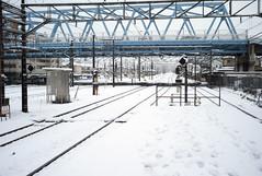 L1005362c (haru__q) Tags: leica snow railway m8  summaron leitz