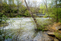 Spring in Appalachia (Singing Like Cicadas) Tags: trees nature water river outdoors spring may westvirginia appalachia waterscape 2016 upshurcounty audrastatepark belington middleforkriver onethousandgifts