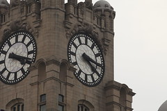 liver building clocks. (bm1551cc) Tags: liverpool streetphotography clocks liverbuildings canonlens 300mmf4l canon5dmk2