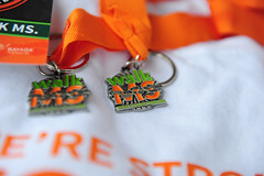2016 Pconos MS  Walk  (63) (delvalmssociety) Tags: pocono aamiryousuf tprphotography walkms2016