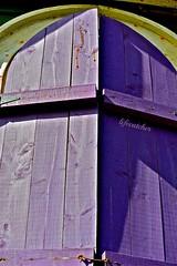 purple shutter (lifecatcher2010) Tags: hinge wood shadow window newfoundland purple grain shutter hook hww dsc5457