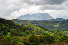 El Monsacro (ccc.39) Tags: rboles asturias bosque nublado nube nuboso lamagdalena monsacro lascaldas montemontaa elaramo
