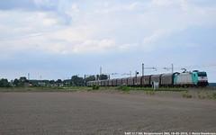 E483 017 - Crossrail per Fuorimuro (MattiaDeambrogio) Tags: train torino italia trains domo treno 017 treni crossrail borgolavezzaro fuorimuro e483