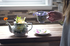 Another Cup, Another Day (18/52) (Rchel Ky) Tags: flowers detail girl afternoon hand tea cups gradient teapot week18theme 52weeks2016