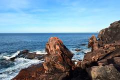 Sleepy Bay (dracophylla) Tags: tasmania sleepybay freycinetnationalpark