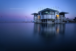 Lisbon Oceanarium // Oceanarium de Lisbonne Portugal