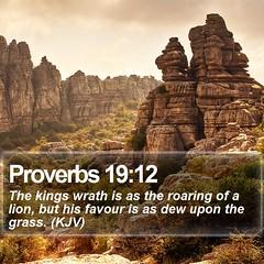 Daily Bible Verse - Proverbs 19:12 (daily-bible-verse) Tags: wisdom meditation pray jesuschrist godisfaithful