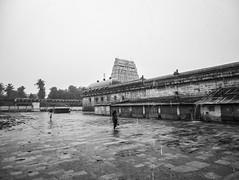 Cultural Roots (Ivon Murugesan) Tags: travel sky blackandwhite india rain architecture temple blackwhite movement south places moment raining hindu tamilnadu afterrain peple hindutemple chidambaram indianarchitedture