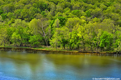 Lake Taneycomo (David Davila Photography) Tags: vacation tree water outdoor mo missouri branson geotag 2016 taney laketaneycomo nikond800 holuxm241