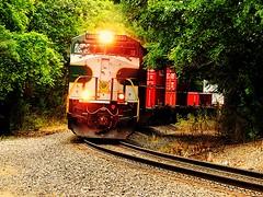 Southern heritage unit rounding the curve near Leesburg Indiana (Matt Ditton) Tags: railroad train tracks indiana leesburg