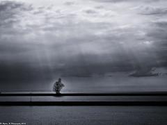 The Seated Man (Hylda_H) Tags: sea sky art monochrome rain statue lelystad anthonygormley markermeer