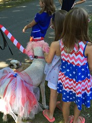 Summer in Connestee Falls. (RobinJP) Tags: 4thofjuly redwhiteandblue redwhiteblue poodle kids girls younggirls dogparade community