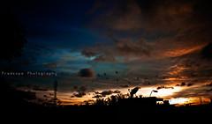 Vivacious Sky (Pradeepa Pandiyan) Tags: blue sky orange india birds clouds evening vibrant chennai