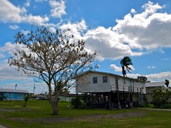 Everglades 8 (xotico) Tags: usa naturaleza verde canal agua florida everglades senderismo canoa reserva estadosunidos eeuu manglar cocodrilos canales manglares xotico xoticosphotos