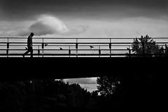 über die Brücke (Martin.Matyas) Tags: bridge blackandwhite bw blackbackground contrast canon blackwhite österreich leute himmel wolke wolken menschen sw graz schwarzweiss brücke landschaft kontrast bäume schwarzerhintergrund canonefs1785isusm schwarzweissfoto eos7d