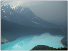 Peyto (Rekha Prasad) Tags: ca canada interestingness scenery ab explore alberta banff banffnationalpark peytolake peyto beautifulnature highway94 beautifulcanada flickrexplore explored amazinglandscape beautyofcanada mostscenicplacesontheearth amazingplacesontheearth