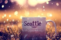 Sssplash! (coral staley-hall) Tags: seattle sunlight cup water grass rain canon 50mm bokeh 14 starbucks splash ihatehomework niftyfifty ilovebokeh t2i coralstaleyhall