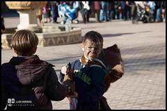 Perros San Sebastin 2012 - 07 (Santa Ana de Pusa, un pueblo acogedor) Tags: santa ana noticias toledo perros talavera 2012 ayuntamiento pusa sansebastin