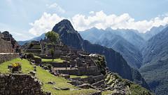 Machu Picchu | « Montaña Vieja »