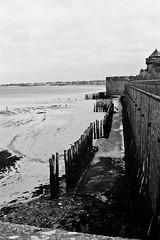 Poles by low tide (roodixx) Tags: sea bw film sand noiretblanc f14 tide voigtlander poles lowtide 135 40mm fortification nokton bessar3a neopan100acros voigtlandernokton40mmf14 bessar3anokton40mmf14