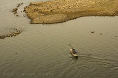 25 (Rohit Arun Rao) Tags: himayatsagar kingofthelake boatmoving