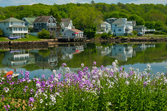 Boothbay Harbor (massbat) Tags: flowers water spring maine calm serene boothbay reflectins