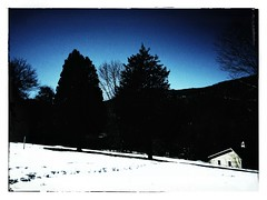 Camera Roll-157 (BB Wylie Walden) Tags: trees cupola snowfields winterlight kentct litchfieldcounty iphoneography