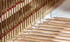 Assembly of a new Organ... (Rainer Fritz) Tags: kirche organ orgel assembly orgelbau marbachan
