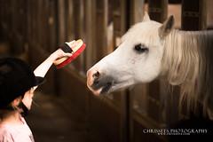 "Kleine meisjes worden.... (*Chris"")) Tags: meisjes paard paarden borstelen"