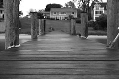 IMG_4059 bw3 (echoey13) Tags: wood house canon bay wooden dock md hill maryland canon70d