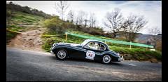 Jaguar XK 140 (1955) (Laurent DUCHENE) Tags: jaguar 140 xk 2016 tourauto peterauto marchampt