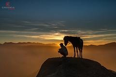 Horse Groom II Mt Bromo  A7rIi w Sony Zeiss 24-240mm (CK NG (choookia)) Tags: horsegroom mountbromo sonya7rii sonyzeiss24240mm travel sunrise