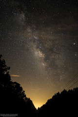 DSC07394 (johnvh9) Tags: travel trees light moon tree nature night stars landscape lights star sony pollution milkyway teamsony rx100ii
