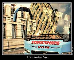 The Travelling Bug / L'Insecte Voyageur (Luna TMG) Tags: voyage travel blue building bus london rose bug coach yorkshire londres insecte immeuble