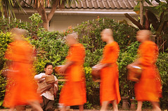 The Lady of Sisavangvong (colin grubbs) Tags: morning travel portrait lady southeastasia rice candid buddhist ceremony streetphotography unesco worldheritagesite monks offering tradition laos luangprabang robes alms laotian laopdr sisavangvong nikond90 updatecollection colingrubbs