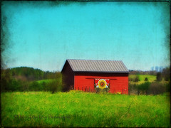I was so naive as a kid I used to sneak behind the barn and do nothing. ~Johnny Carson (Child of the King Photography) Tags: trees red texture barn fences fields redbarn tatot shadowhousecreations 2012childofthekingphotography flickrsfinestimages1 flickrsfinestimages2
