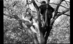 The Musicians (There, There) Tags: bw tree 35mm guitar andrew ethan 2008 demarest climbers
