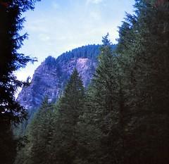 Washington   -   Mt. Rainier National Park  -  September 1970